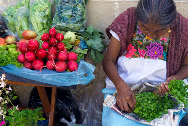 Night of the radishes: Mexico